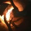 fire lit in a rock fire pit