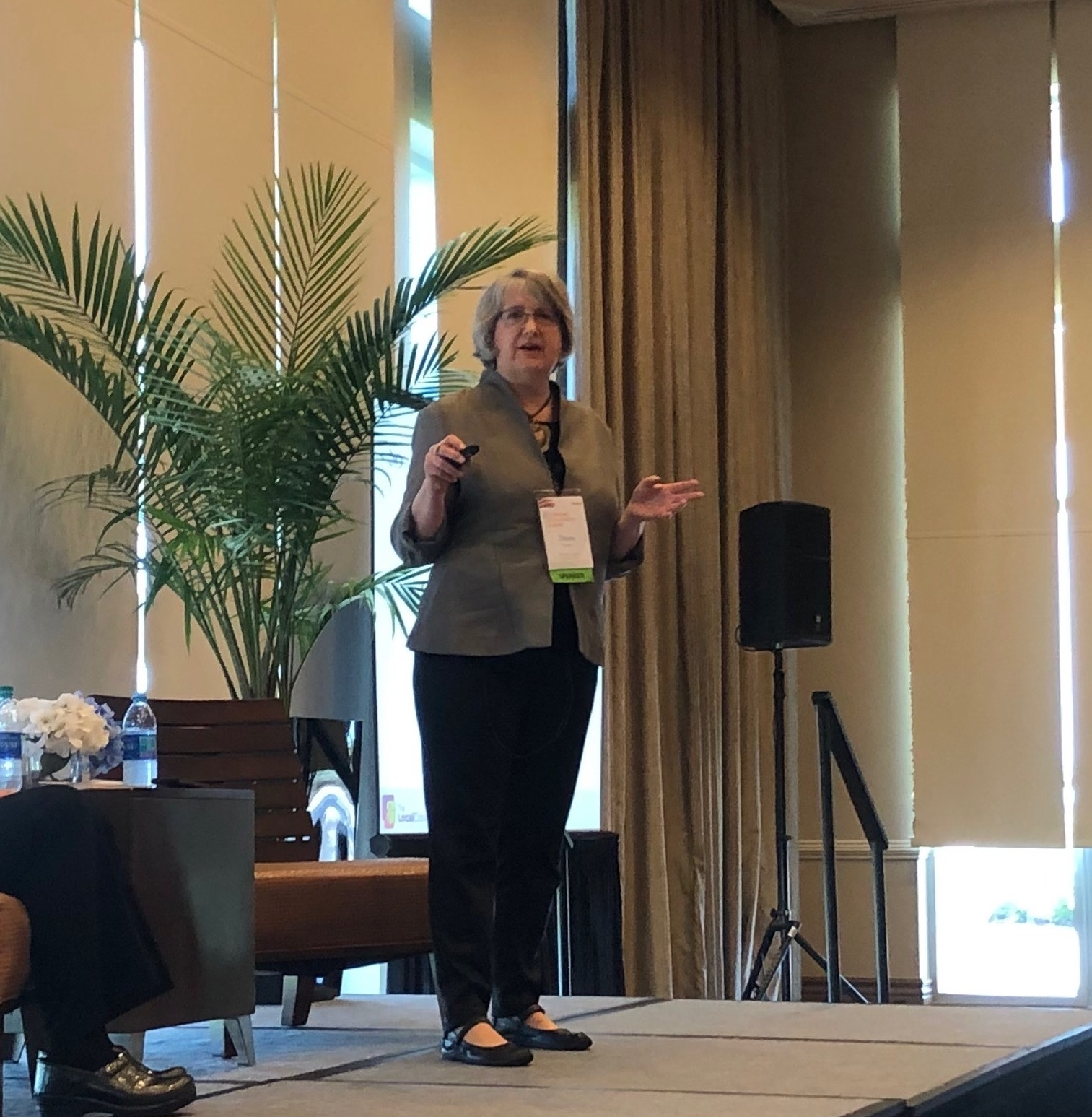 Diane Sontum on stage giving a presentation