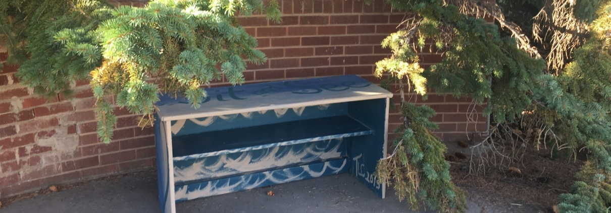 painted bench next to brick fence and pine trees